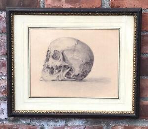 Vintage German Skull Drawing Vanitas Memento Mori