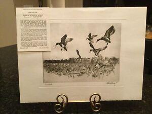 "Richard E. Bishop's ""GREENHEADS"" Talio-Crome Vintage Ducks Landing Print"