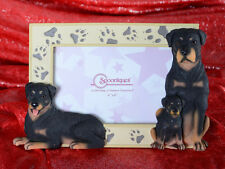 "Spoontiques ROTTWILER Puppy Paw Picture Photo Picture Frame 4"" x 6"" Glass ~NEW~"