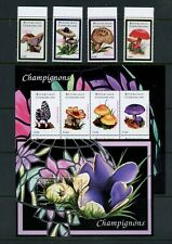 S013  Central Africa  2001   mushrooms   set & sheets    MNH