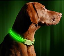 SAFETY LED Dog Pet Light Up Collar Night Glow Adjustable Bright 6 Colors Flash