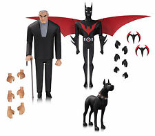 Batman Beyond 3 Pack Animated Action Figure DC Collectables Terry Mcginnis