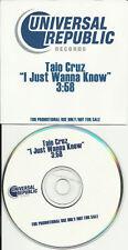 TAIO CRUZ I just wanna Know TST PROMO Radio DJ CD single 2006 MINT