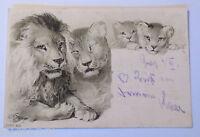 """""""Löwen"""" 1901, Prägekarte  ♥ (18783)"""