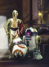 Paper wallpaper 184x254cm STAR WARS Three Droids wall mural - childrens room