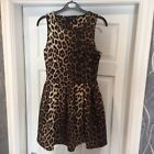 Beautiful TOPSHOP Skater Style   Stretchy Evening Dress 10 Fabulous !