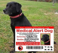 Service Dog Card, Medical Assist, Service Animal ADA Card, Wallet ID Card, SD