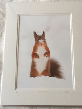 """Wild Dales Photography Signed Limited Edition Print of a Red Squirrel """"Ta Daaa"""""""