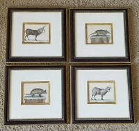 ANTIQUE ENGLISH HAND-COLORED PRINTS OF ANIMALS (COLLECTION OF FOUR PRINTS)
