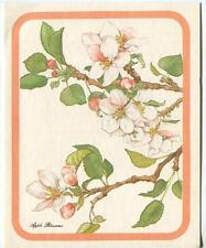 VINTAGE APPLE TREE PINK WHITE SPRING FLOWER BLOSSOMS NATURE GREETING ART CARD
