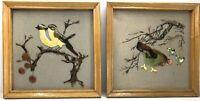 "Framed Art MCM Enamel Cloth Birds on Cherry Tree Hen Chicks Farm 9.5 x 9.5"" Vtg"