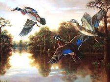 """""""Nature's Flight II"""" by Micheal Lynn 20 X 30"""