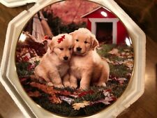 "Royal Doulton ""Fall In Love"" Collector Plate Golden Puppies"