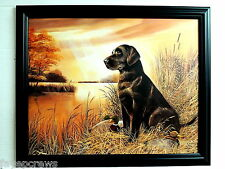 CHOCOLATE LAB DOG PICTURE LABRADOR RETRIEVER DUCK DECOYS HUNTING  FRAMED 16X20