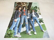 THE RAMONES - Mini poster couleurs !!!!!!!!!