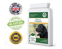 Dog Probiotics by Good for Pets | with Digestive Enzymes Pet Health care Natural