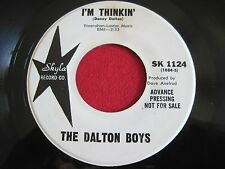 OLDIES 45 - THE DALTON BOYS - I'M THINKIN / MUCH MORE STRONGER - SKYLA 1124