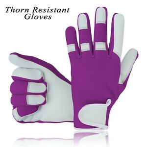 Thorn Proof Resistant Gloves Gardening Ladies Women Girls Work Mechanic Field UK
