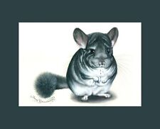 Chinchilla ACEO Print Cool Guy by I Garmashova