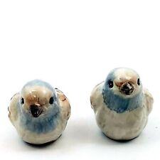 Salt Pepper Shaker Set Little Bird Collectible Decorative Kitchen Home Goldminc