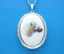 HORSES Porcelain WHITE QUARTER HORSE CAMEO ST Costume Jewelry Locket Necklace