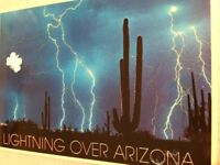 Vintage Postcard Photo of Lighting Over Arizona Cactus Ray Manley Petley Studio