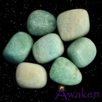 *ONE* AMAZONITE Natural Tumbled Stone Approx 15-20mm *TRUSTED SELLER*