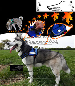 BLAZE Dog Reflective Harness, XS S M L XL extra padded heavy duty Siberian Husky