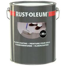 Pintura de suelo gris claro taller de garaje recubrimiento rustoleum 7181.5 5L RAL 7035