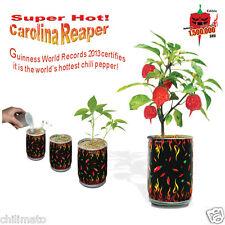 "Carolina Reaper Seeds ""All Included in Growing kit"" Grow Carolina Reaper Pepper"