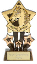 HORSE RIDING Equestrian Star Trophy FREE ENGRAVING Gold Silver Bronze Award Pony