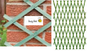DARK GREEN Expanding 6ft Wooden Trellis Garden Scissor Plant Fence Panel