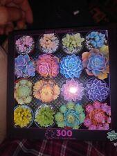 Buffalo 300 Piece Puzzle Sweet Succulents