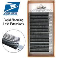 Lashview Rapid Blooming Volume Eyelash Extensions Fast Fan Individual 5D/6D Lash