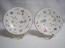 Totally Today China TWO Saucers  Rare Floral Pattern Great Condition