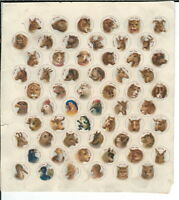 NJ-024 Victorian Zoo Zoo Lithograph of 60 Animals 6x6.75-inches Vintage