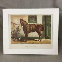 1895 Cavallo The Roadster Equestrain Art Equine Antico Cromolitografia Stampa