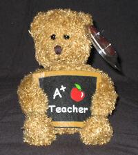 TY COOL TEACHER the BEAR BEANIE BABY - MINT with MINT TAG