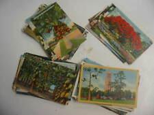 50 Older Florida Postcard Lot