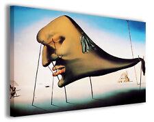 Quadri famosi Salvador Dali' vol XII Stampa su tela arredo moderno arte design