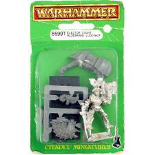 Warhammer Fantasy Empire Elector Count of Hochland, Aldebrand Ludenhof Metal WFB
