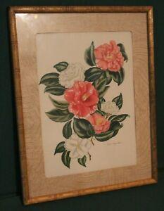 """Lila Moore Keen Camellia Flower Framed Print 11"""" x 14"""" LAMBERT TIKI FRAME"""