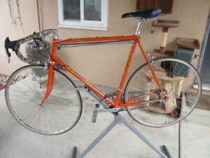 Vintage Rossin Road Bike 59cm Campagnolo