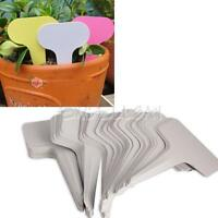 100PCS NEW 6x10cm Plant T-type Tags Markers Nursery Garden Labels Gray Plastic