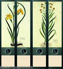File Art 4x Ordner-Etiketten PLANTS ★ Pflanzen Ordner RÜCKENSCHILDER Sticker 038