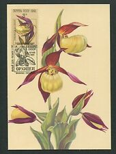 RUSSIA MK 1991 FLORA ORCHIDEEN ORCHIDS MAXIMUMKARTE MAXIMUM CARD MC CM m191/2