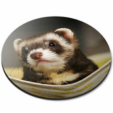 Round Mouse Mat - Ferret Hammock Pet Rodent Animal Office Gift #16329