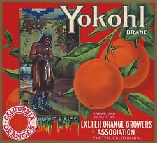"OLD ORIGINAL 1920 INDIAN FISHING ""YOKOHL BRAND"" BOX LABEL ART EXETER CALIFORNIA"