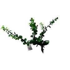 Green Spears and Driftwood Aquarium Decoration, Artificial Ornament Decor