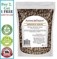 4 oz. Moringa Seeds 400 Fresh Semilla de Moringa oleifera 100% Fresh Malunggay